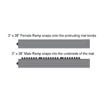 24/Seven Ramps Dims